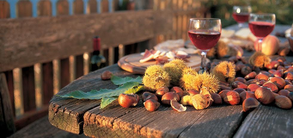 Festa di San Martino. Come si festeggia in Italia